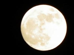 Full Moon 91