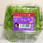 ブーケレタスのサラダはいかが? (番外編)