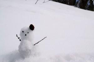 snow 160
